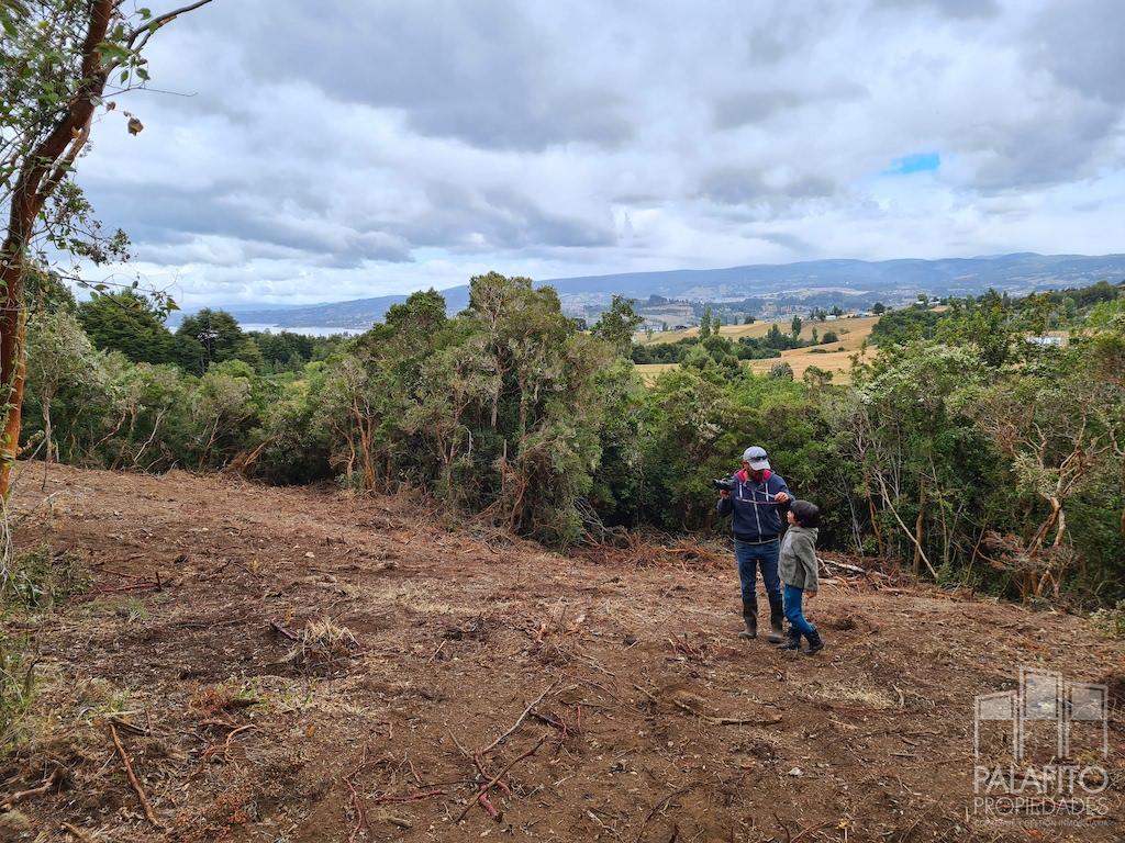 venta hermosas parcelas con bosque, sector Quilquico, comuna Castro, Chiloé