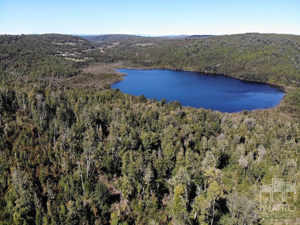 13 hectáreas con bosques y orilla de Laguna, comuna de Chonchi